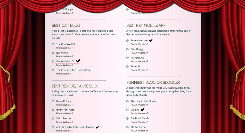 pettie awards-2013-finalists-best cat blog-001