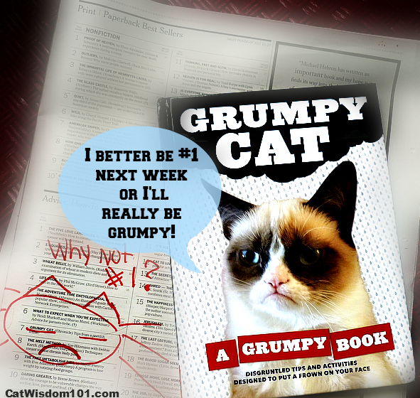 Grumpy Cat book review-giveaway- NY Times best selling list