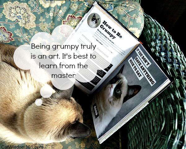 Grumpy Cat book review-giveaway-meme