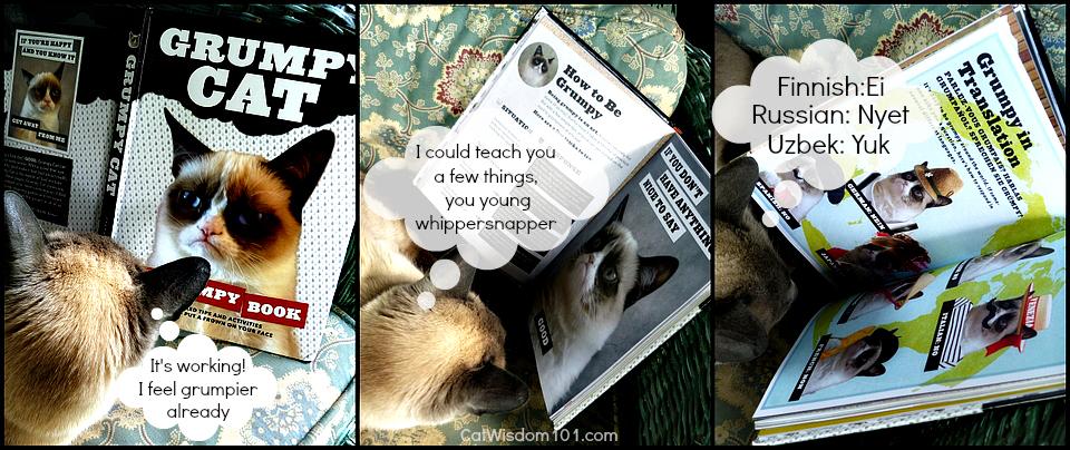 Grumpy Cat book review-giveaway