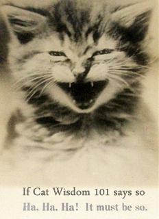LOL-antique cat.bmp