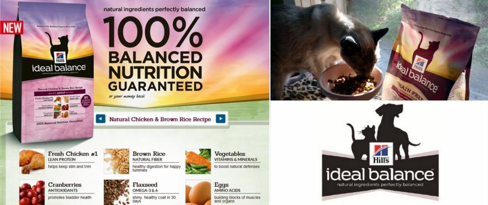 Hills C D Cat Food Flavors