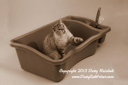 cat litter box history - Litter Boxes