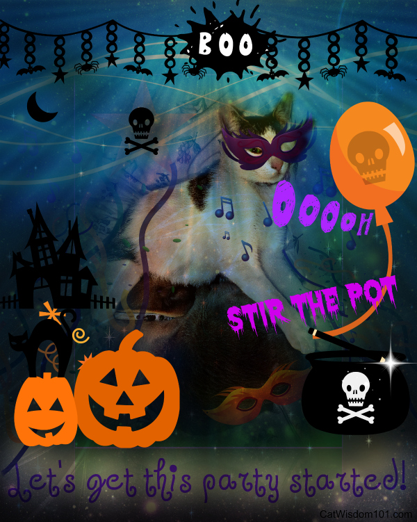 Halloween cats party