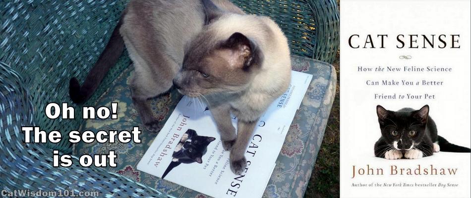 Interview John Bradshaw- cat sense-the new feline science-cat book