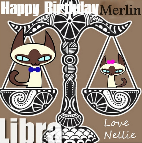 astro kitty libra-birthday siamese cat