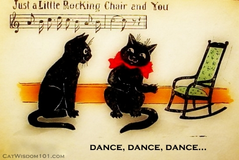 vintage black cat art postcard