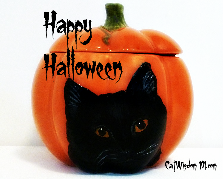 Vintage Halloween Art, Pumpkins, Black Cats, and Forever Homes