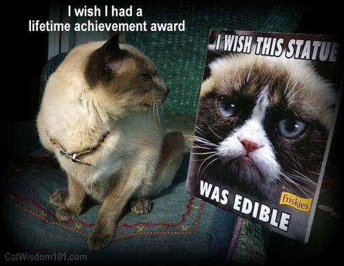 grumpy cat LOL lifetime achievement award