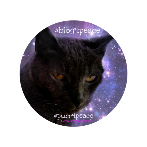 Gris gris- peace cat quote-#blog4peace