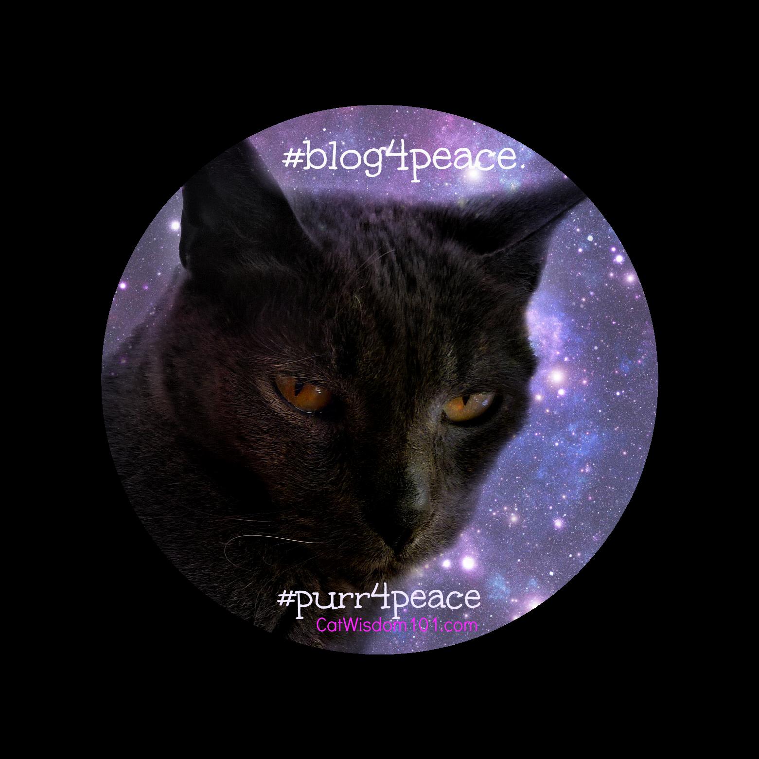 Gris gris- peace cat quote-#blog4peace