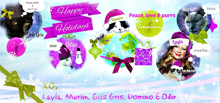 2013 Cat Wisdom 101 Happy Holidays