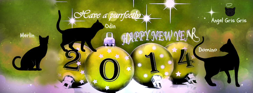 2014 new year cats
