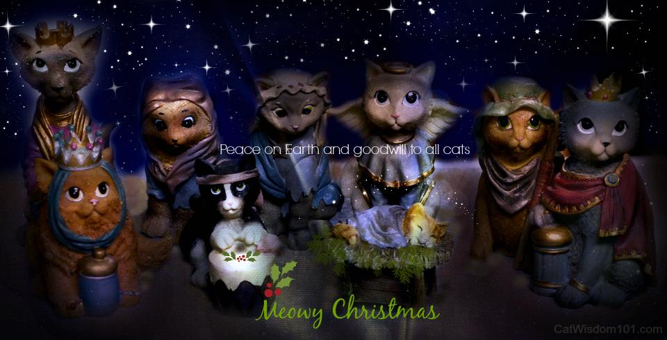 Holy Catmas Nativity