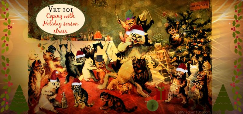 vet 101 cat holiday stress