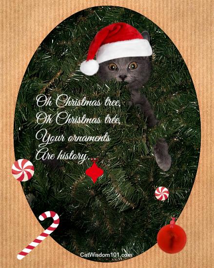 catmas carols cat card