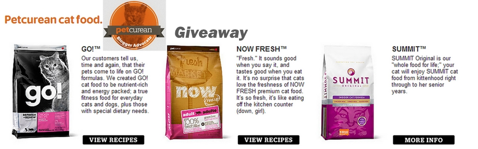 petcurean cat food giveaway