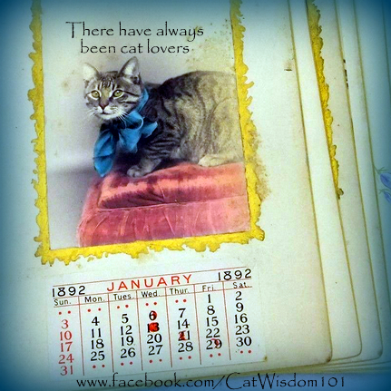 cat calender vintage