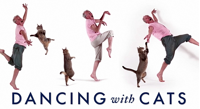 Cat In the Hat Day & Dancing Cats Book #Giveaway