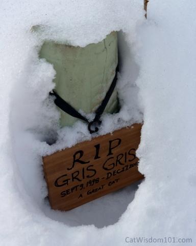 Gris Gris cat grave marker
