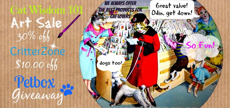 Cat Wisdom 101 discount code, sale, giveaway