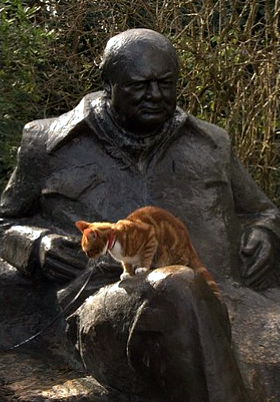 Chartwell Churchill sculpture cat