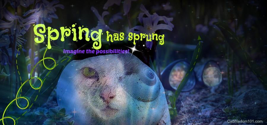 Caturday Art Blog Hop: Spring Has Sprung! & BlogPaws Discount +