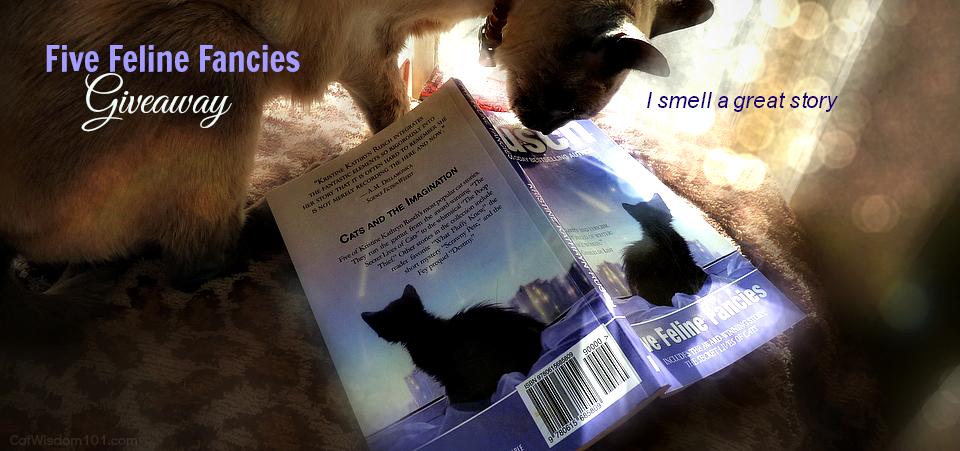 Five Feline Fancies Book Review & Giveaway