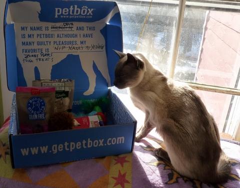 petbox merlin-cat giveaway
