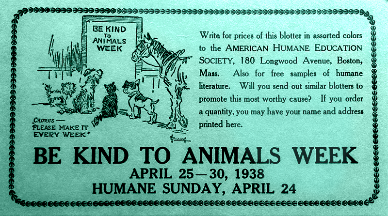 essays on kindness towards animals Essay on kindness is rewarded cardosoinoxcombr, acts of kindness essay short  story by tyler irby, essay kindness towards animals, kindness essays.
