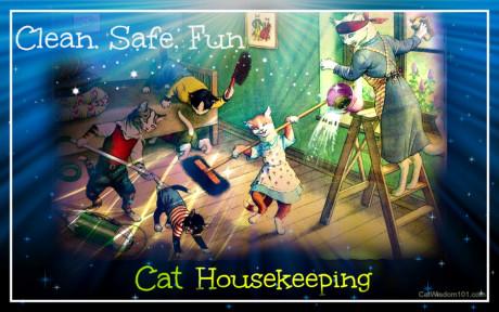 safe cat housekeeping