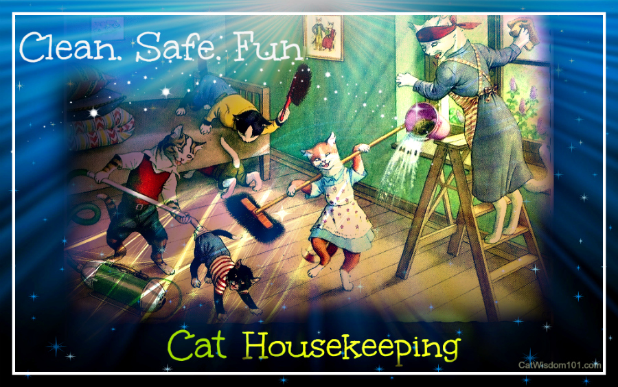 safe cat housekeeping