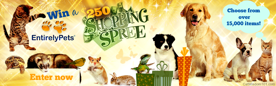 Win An Awesome $250 Shopping Spree From Entirely Pets