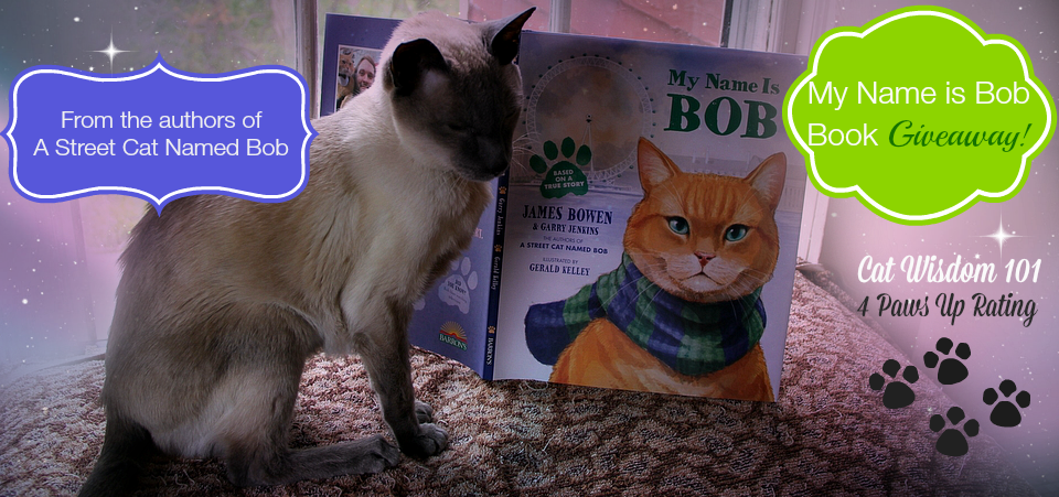 My Name Is Bob Book Review Giveaway Cat Wisdom 101 Everything Feline Since 2011