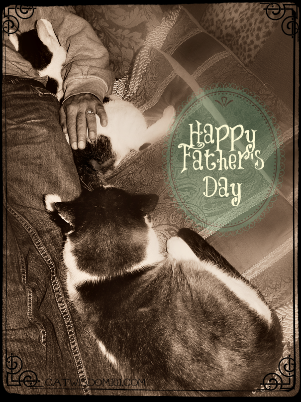 Cat dad day-cat daddy-sepia