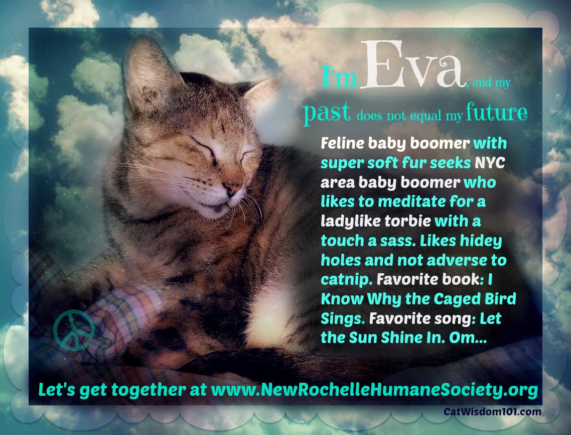 #AdorableAdoptables Success Story & Meet Eva