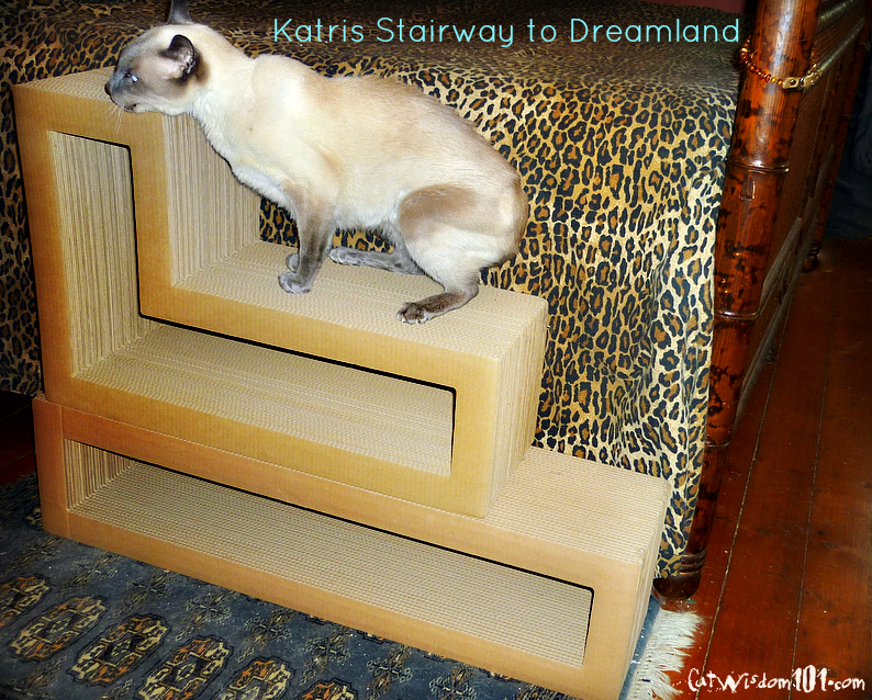 Katris stairs bed