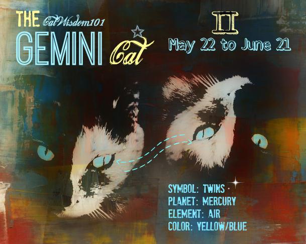 astro-kitty gemini cat art