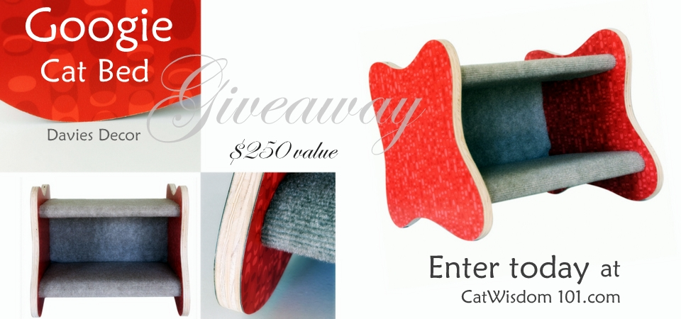 Big Birthday Giveaway: $250 Googie Cat Bed