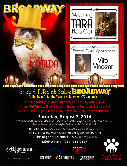 Hot Summer Cat Events from L.A. To N.Y.
