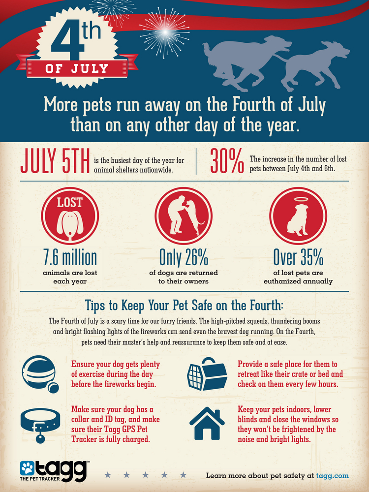 tagg-4th July-infographic-pet safety