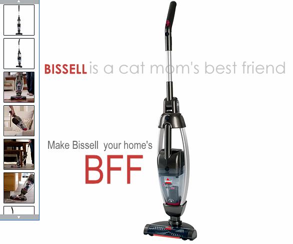 Bissell Lift Off Pet Powerfresh Liftoff Steam Mop