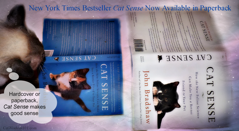 Cat Sense-book review