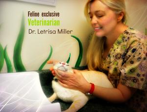 Dr. Letrisa Miller