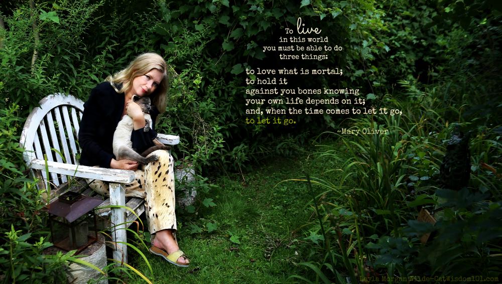 Layla Morgan Wilde-Merlin-Gris Gris grave