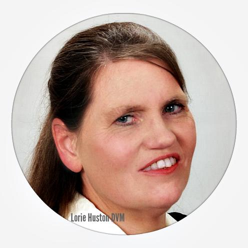Vet 101: Profile Q & A -- Meet Dr. Lorie Huston DVM