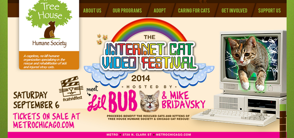 #CatVidFest 2014 with Lil BUB + More!