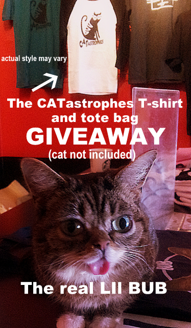 CATastrophes -lil bub- giveaway