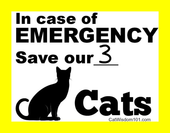 Emergency pet cats sign
