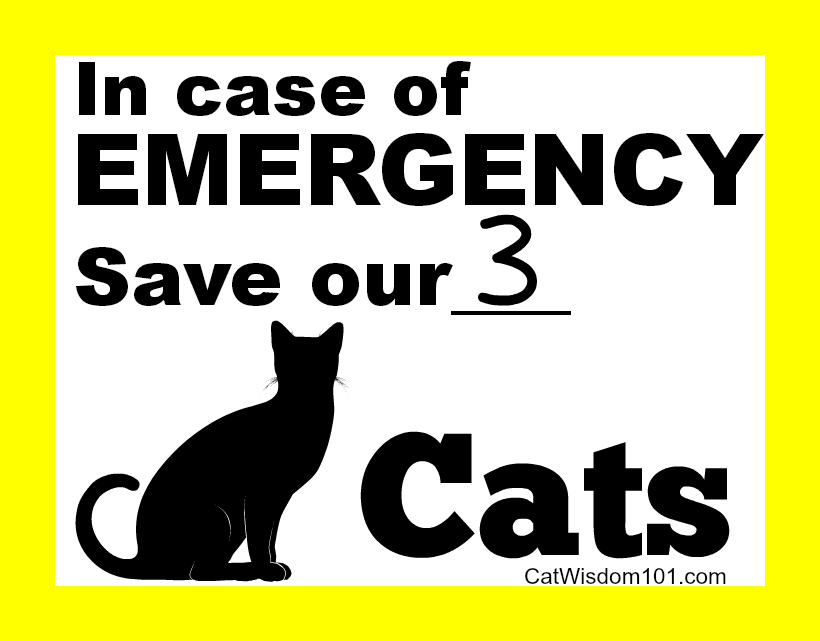 Emergence pet cats sign
